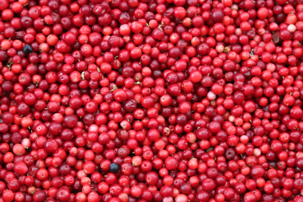 Jamaican cherries