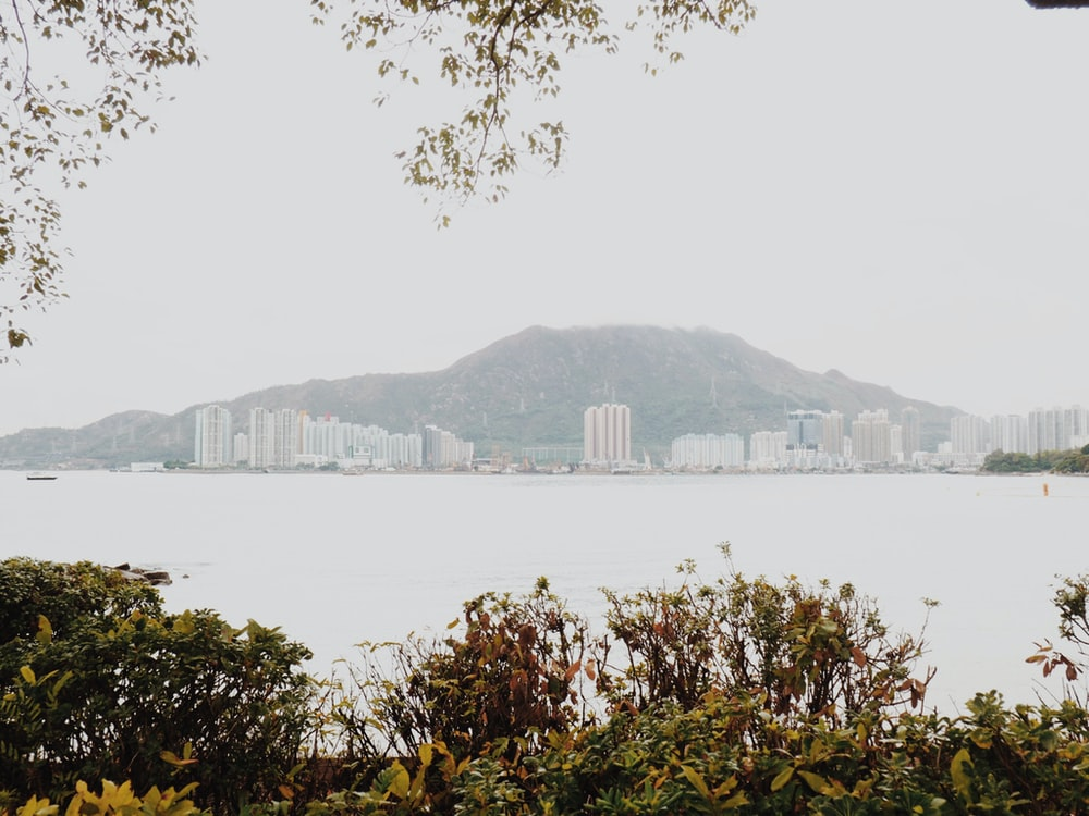 city buildings near mountain and body of water