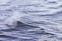 waves of water