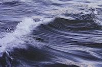 photo of ocean waves