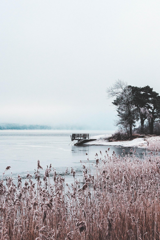 Många positiva effekter av vinterbad - men det är inte ofarligt