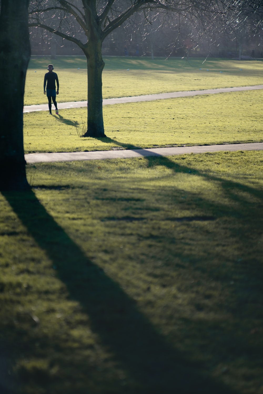 man standing near the tree during daytime