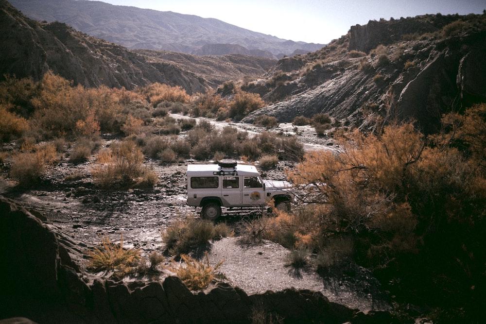 white SUV parked near bush