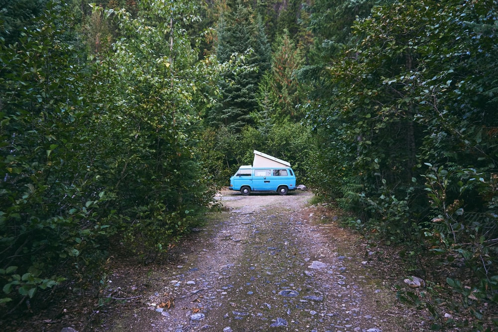blue van surrounded by green trees during daytime