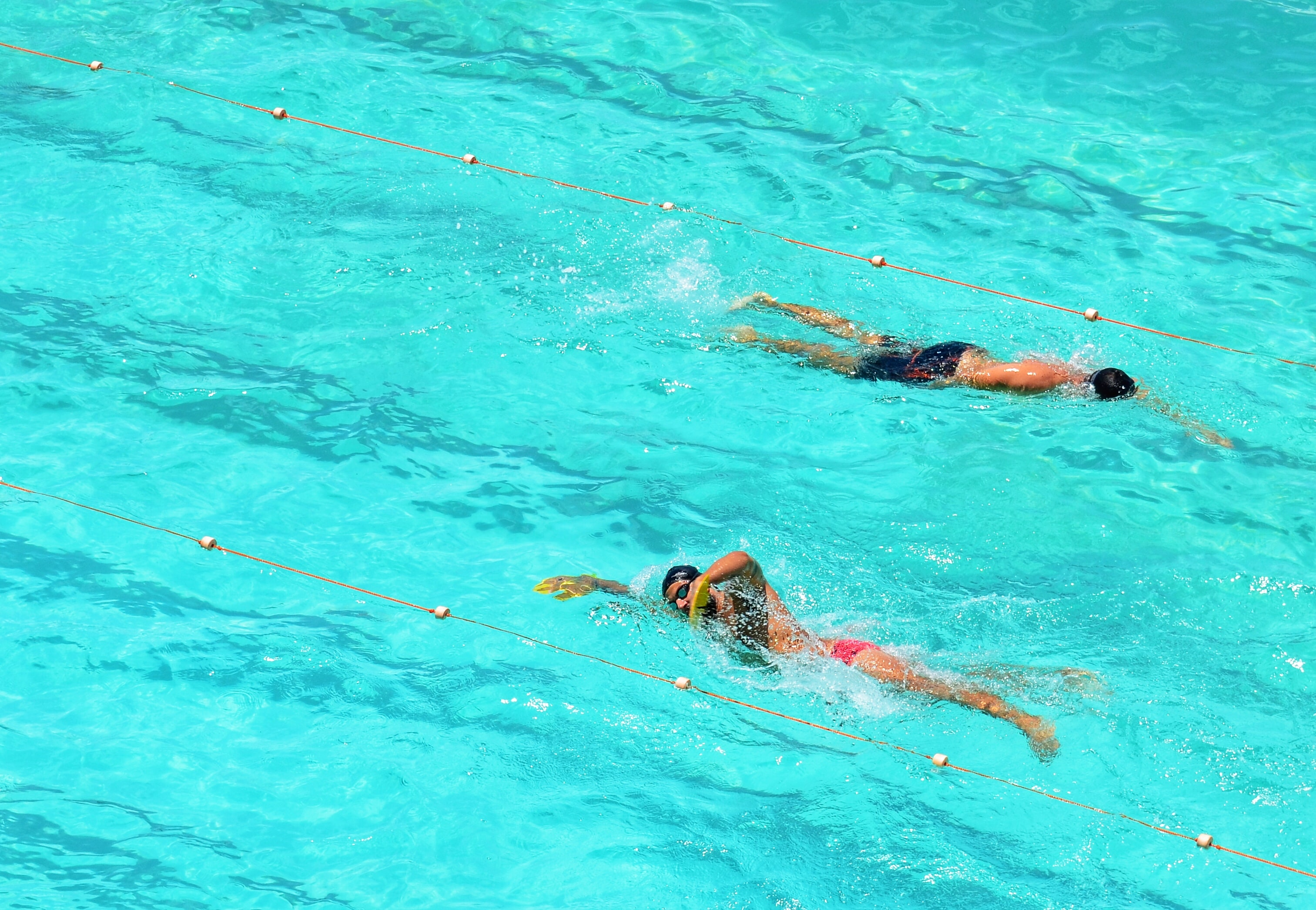 two person swims on opposite direction