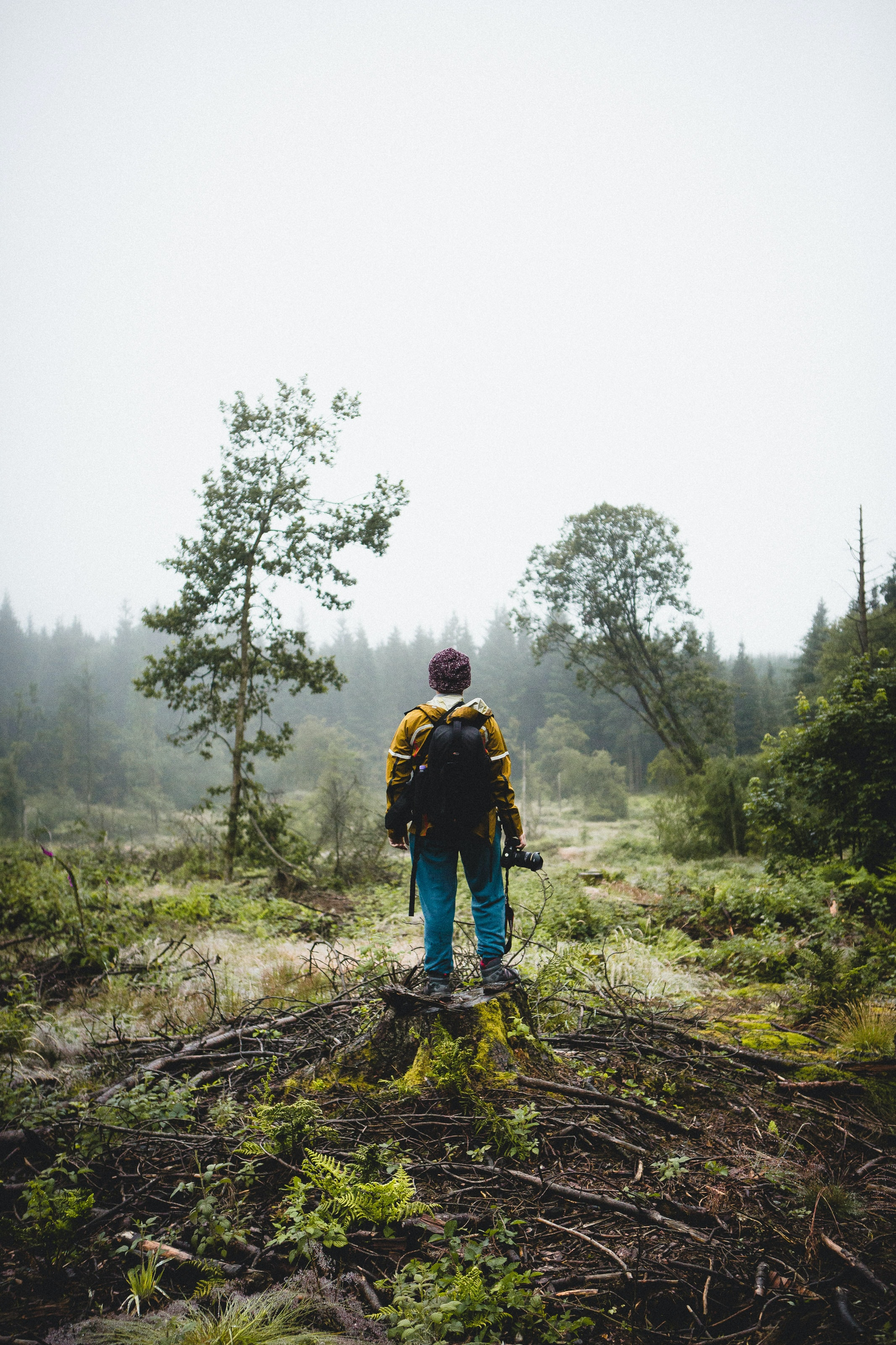 man standing on twigs facing foggy forest