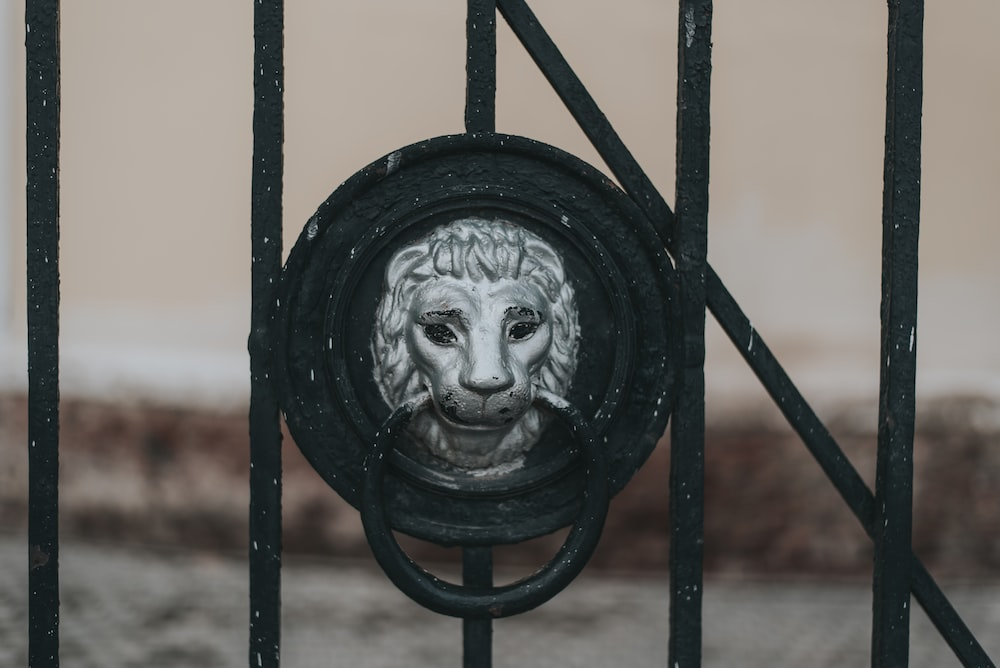 black metal fence with lion head carved