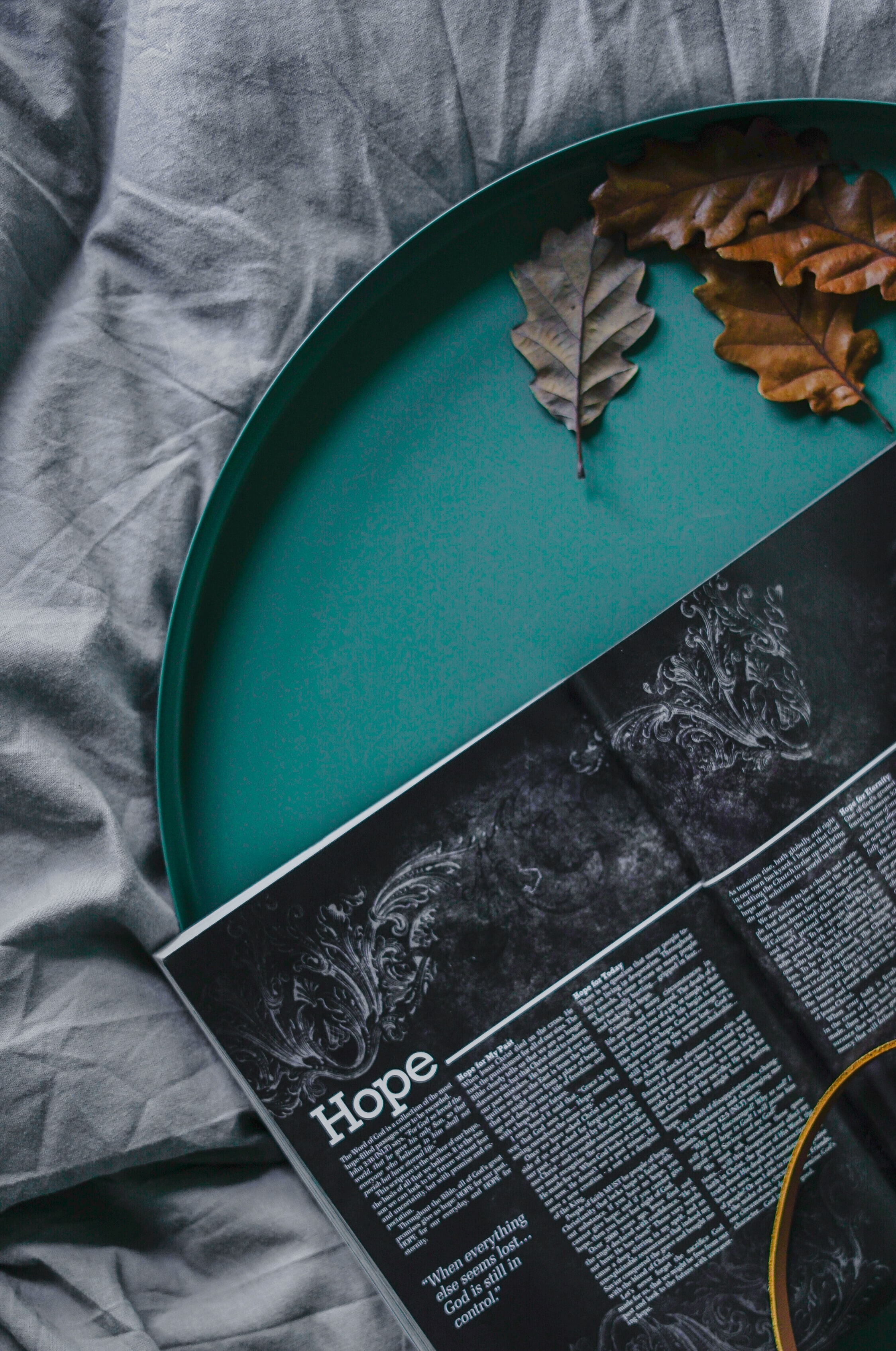 book and dried leaves on green plate
