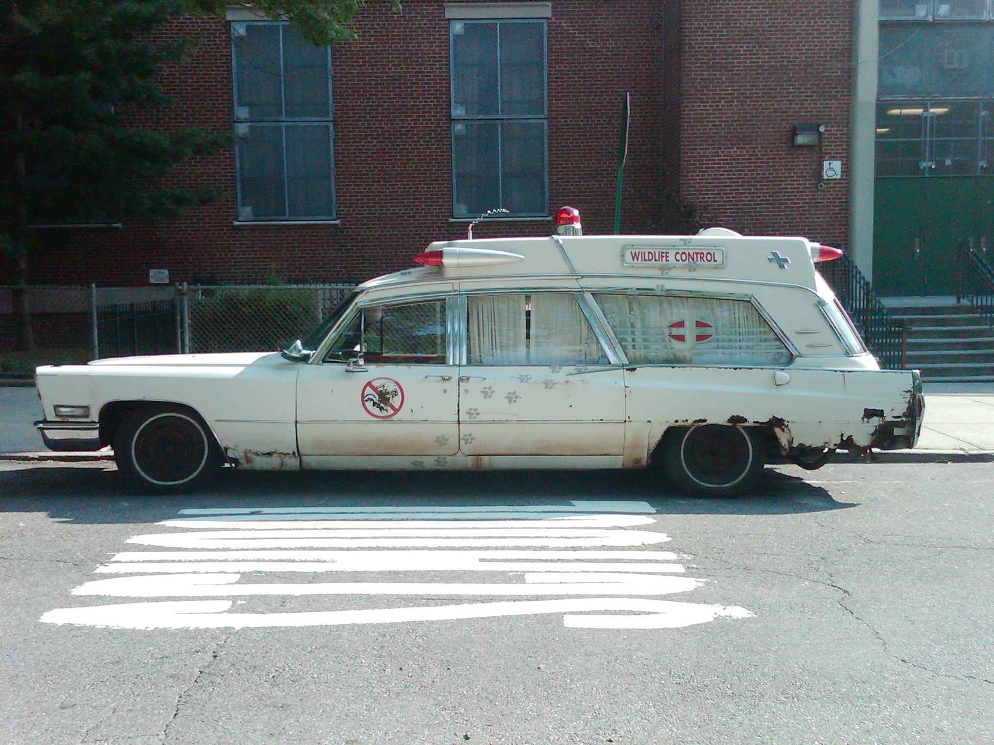 white station wagon
