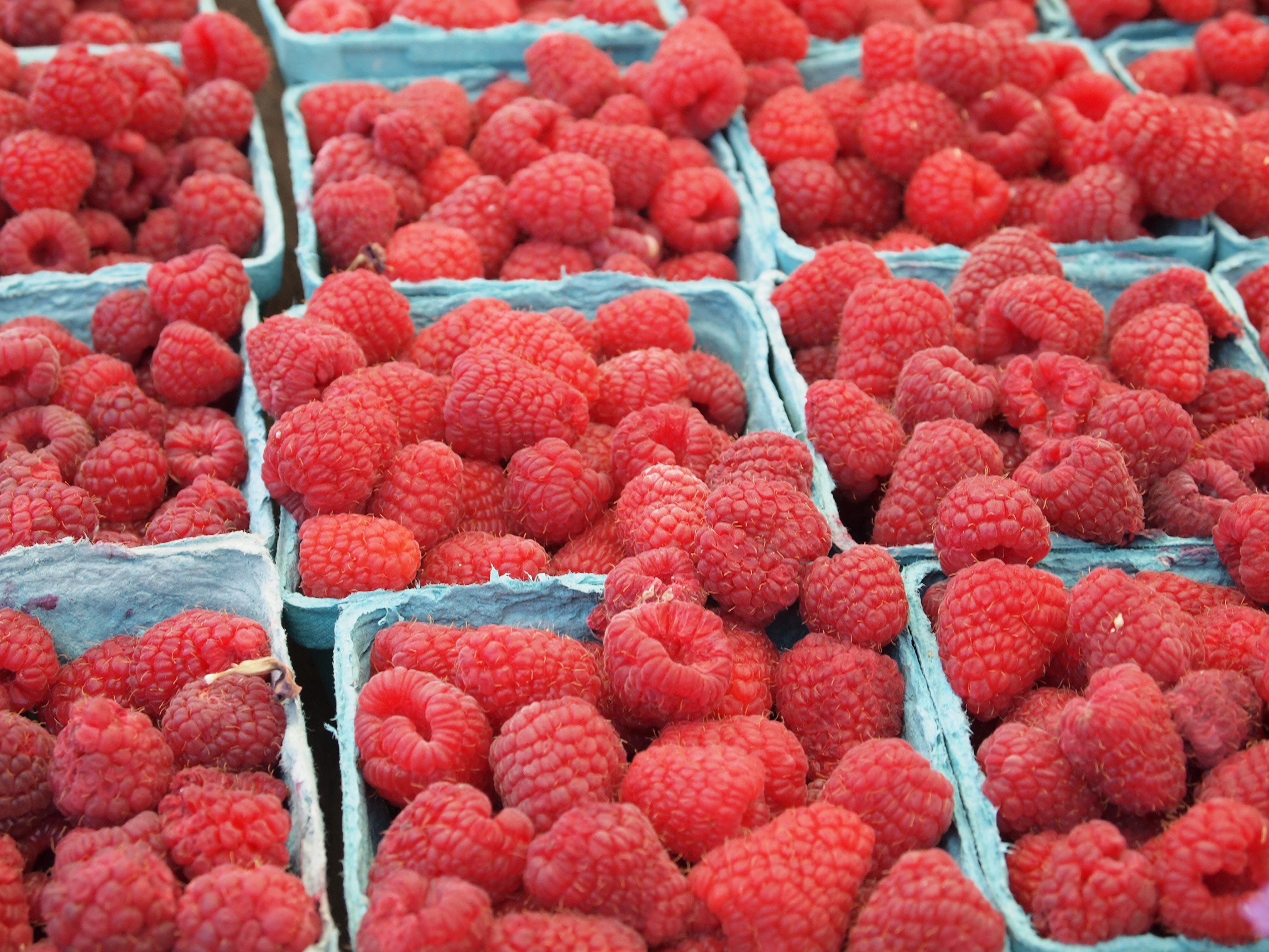 raspberry lot