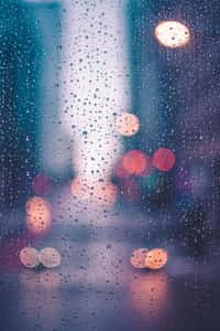 A Rainy Day weather stories