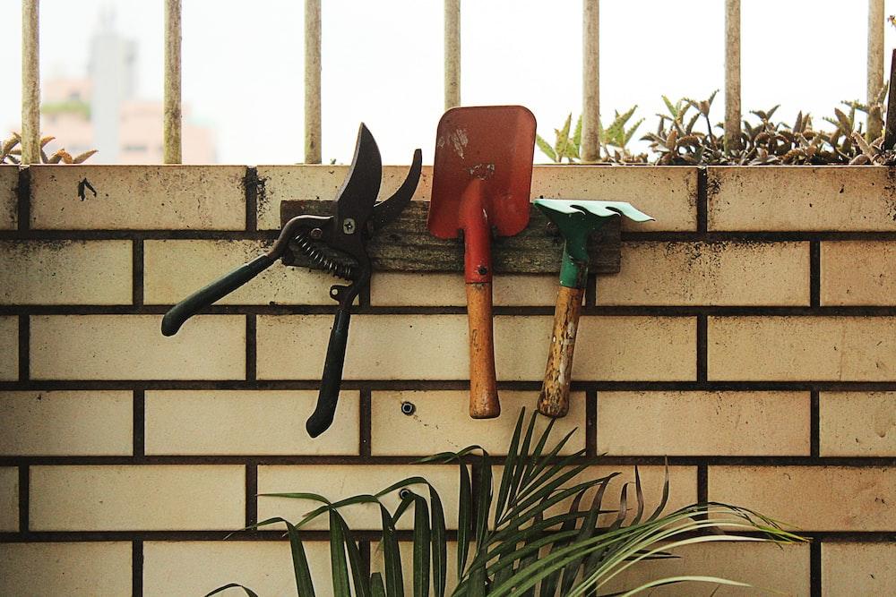 red shovel hanging on rack beside plant