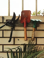 Gardening Tips for You