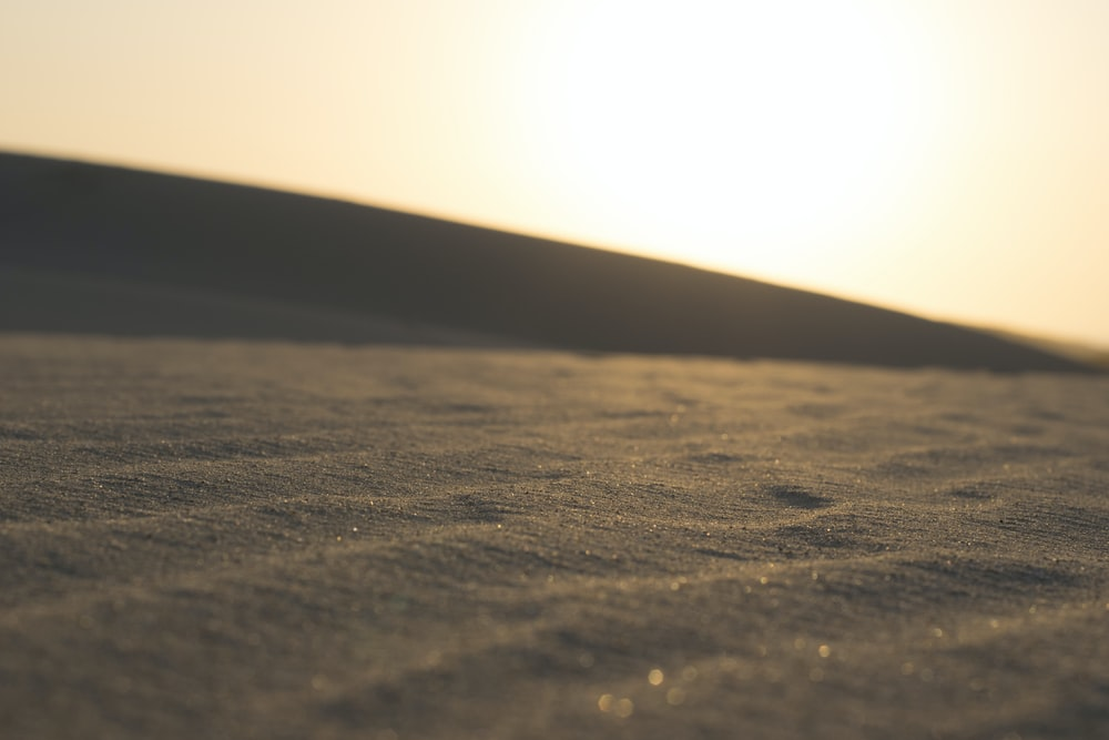 focus photography of sand