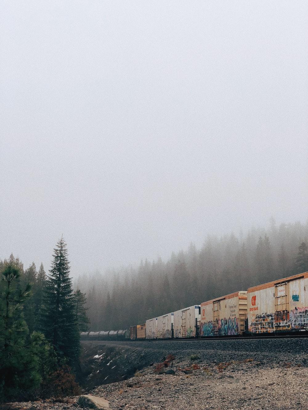 beige train