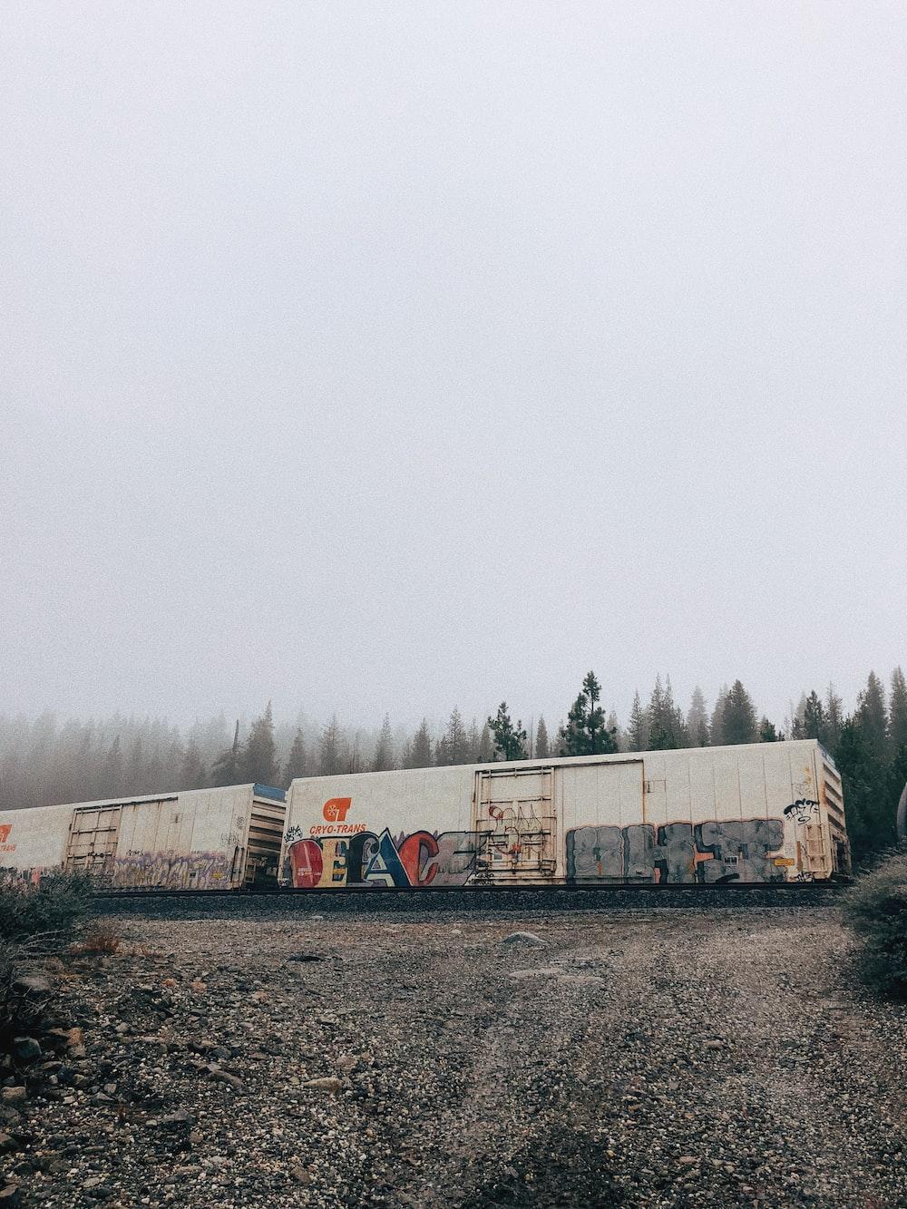 white and black train cars with graffiti