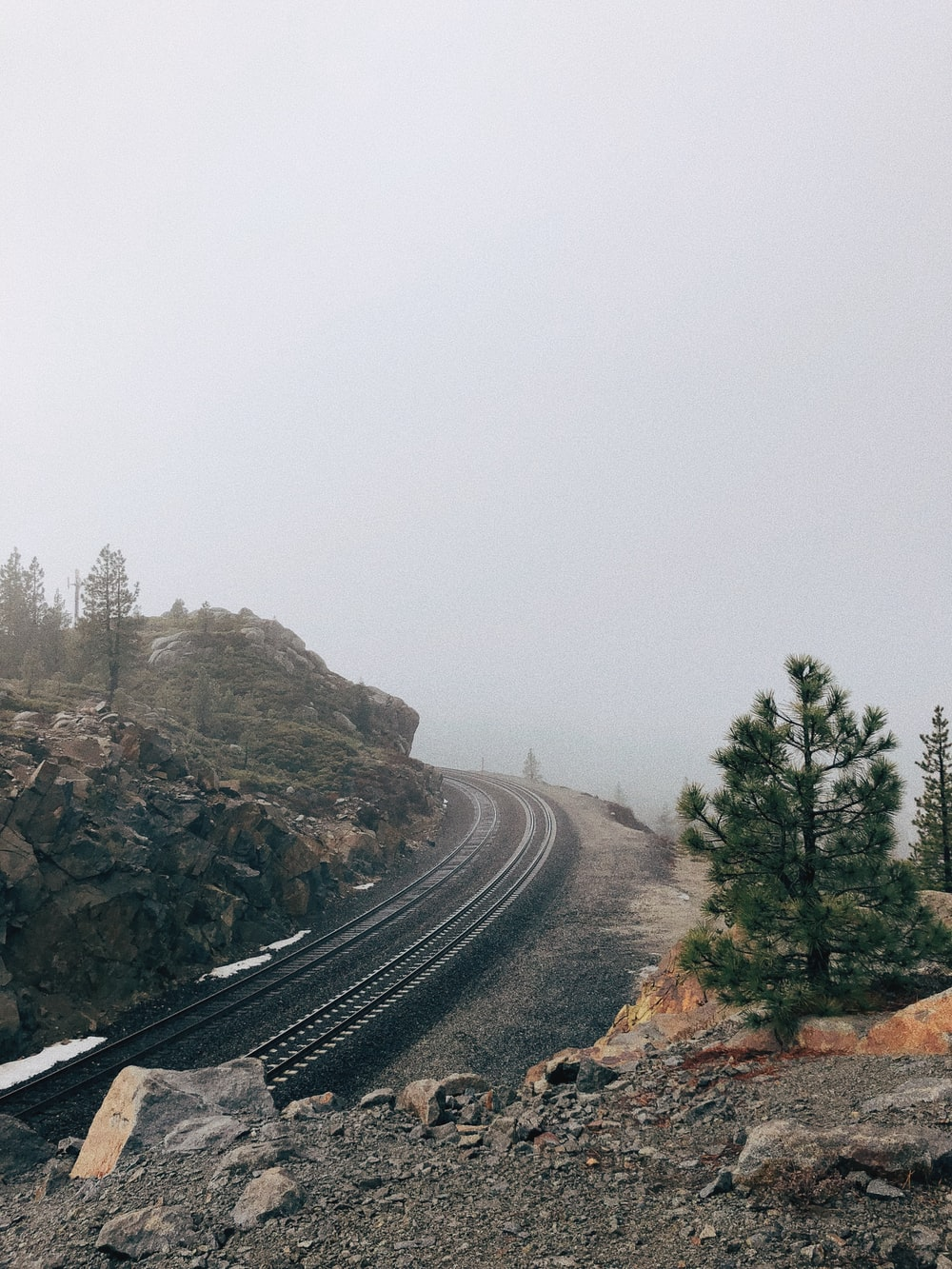 gray railroad near tree during daytime