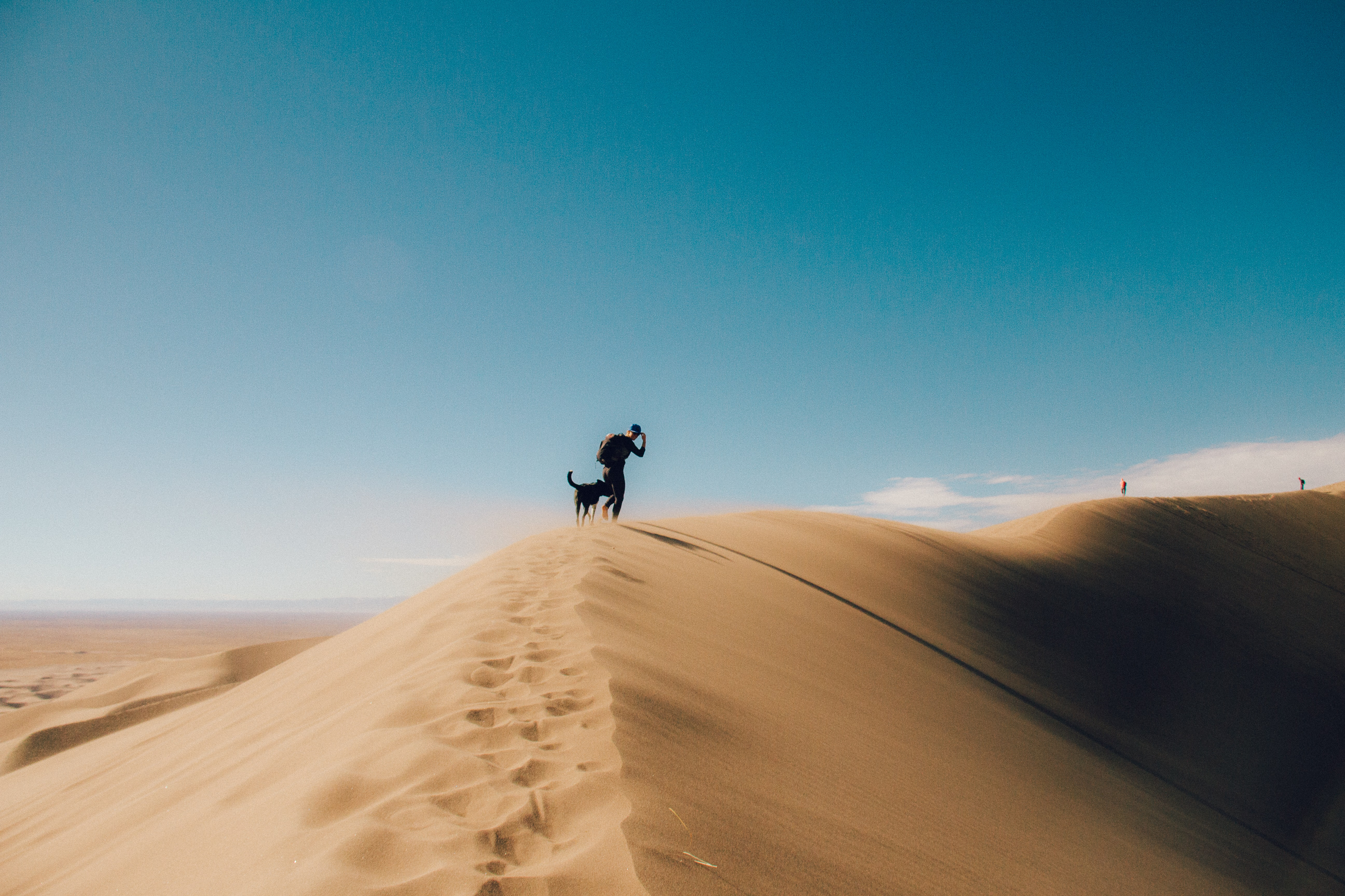 silhouette photo of person and dog on desert mountain