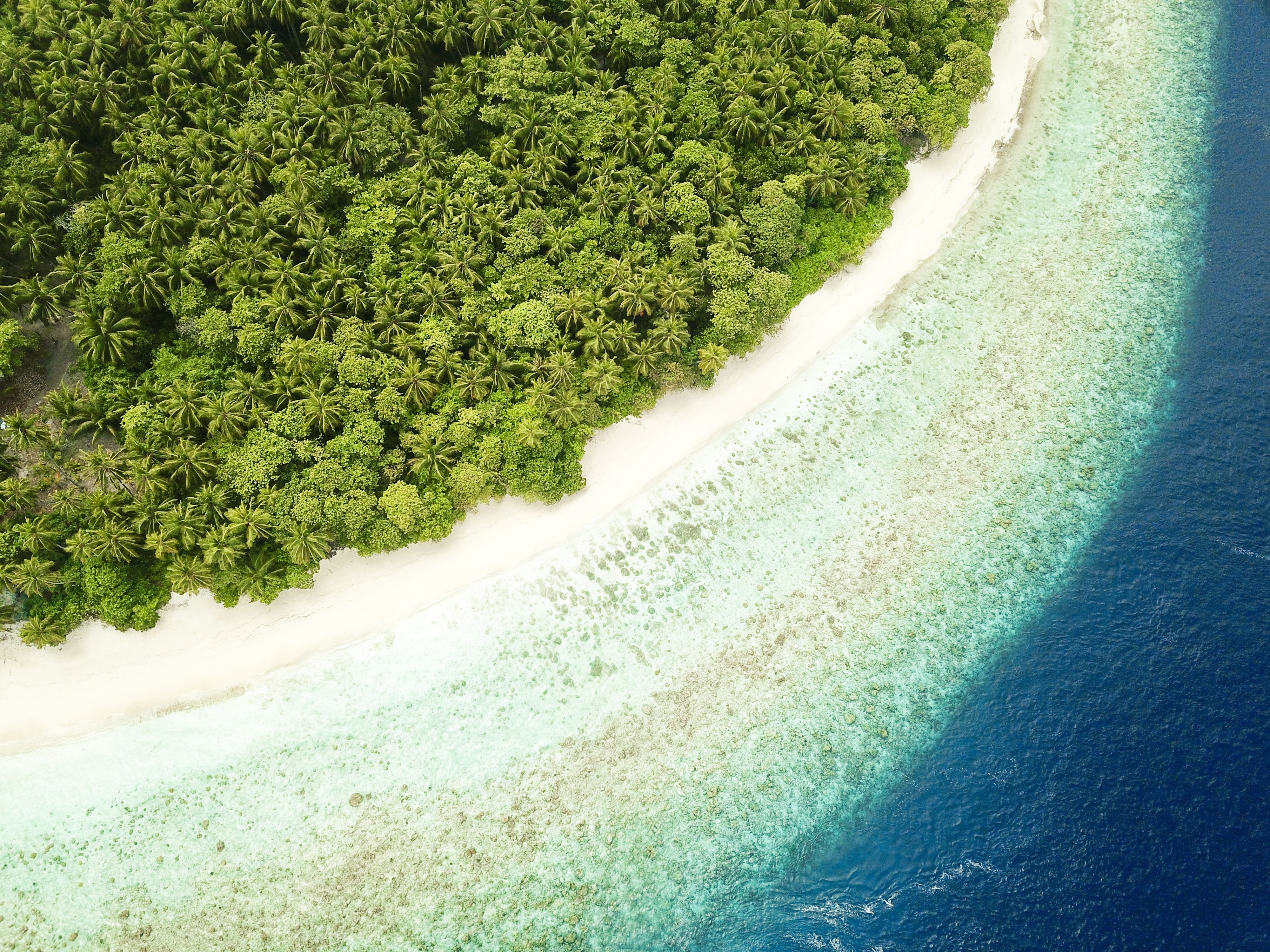 bird's-eye view photography of islet