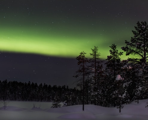 trees on field covered with snow during Aurora Borealis Phenomenon