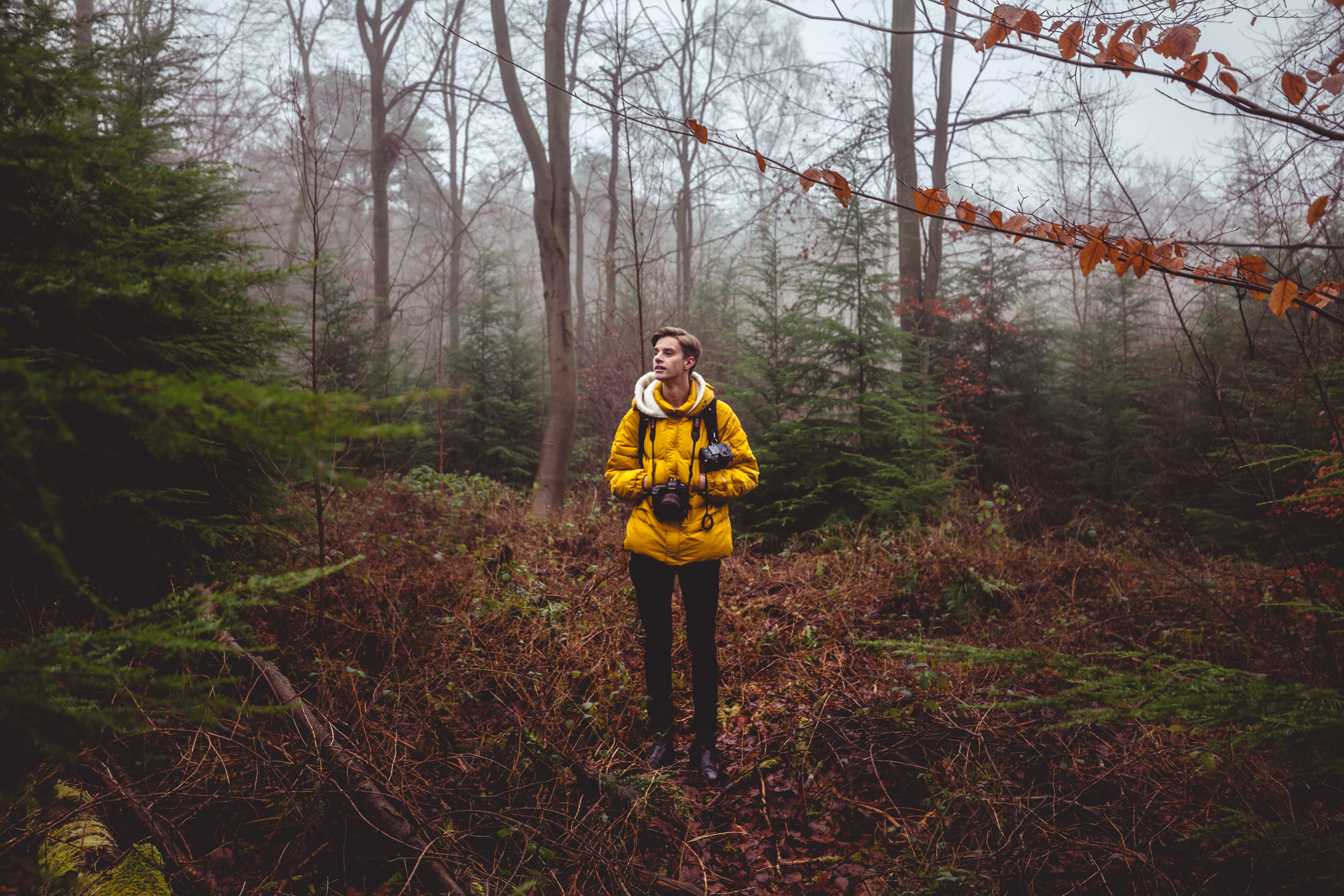 man in yellow jacket holding black camera standing on brown grasses under trees