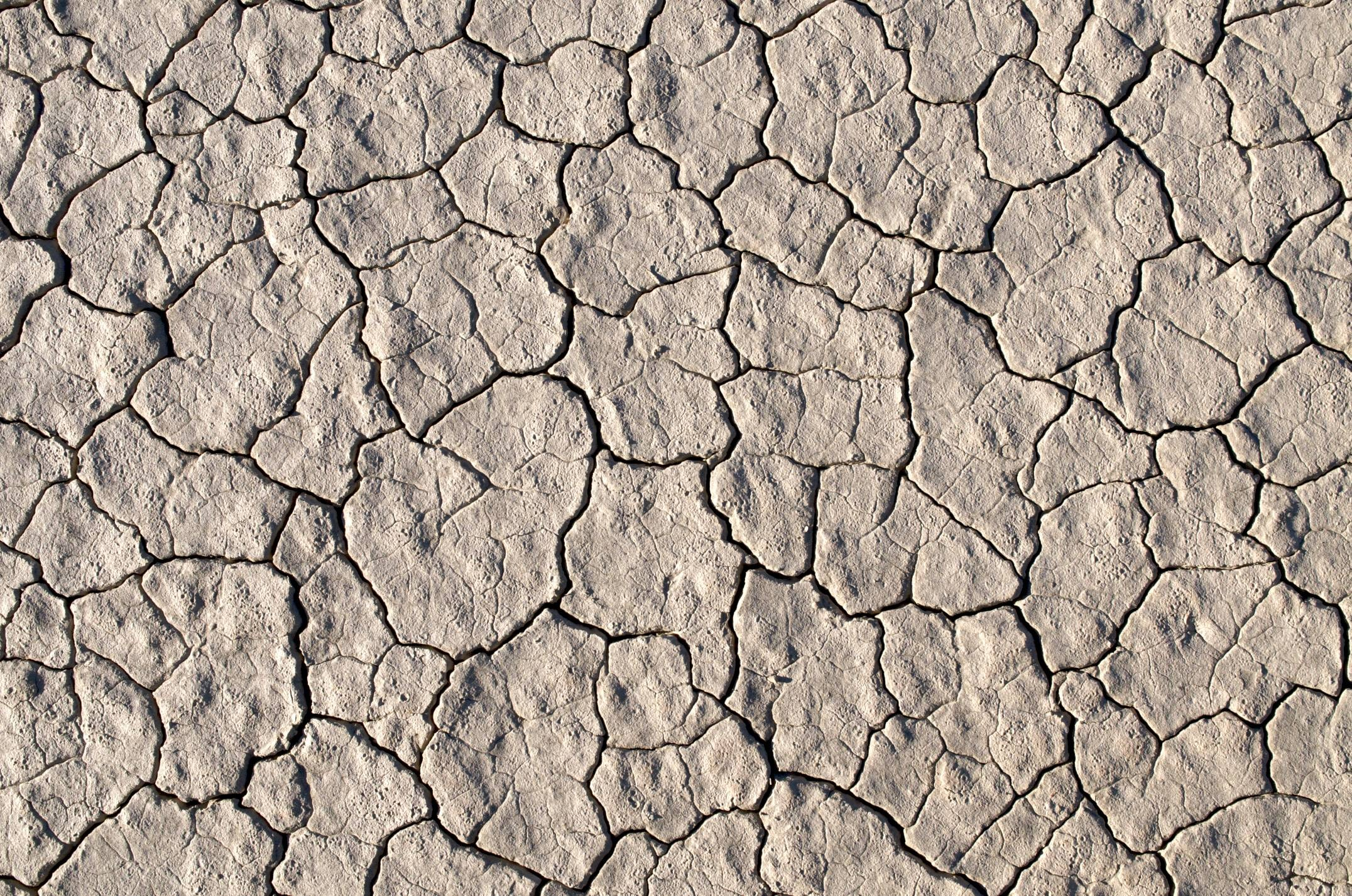 dried up soil