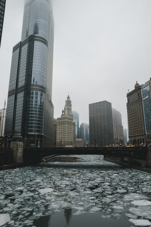 frozen river under bridge photo during foggy daytime