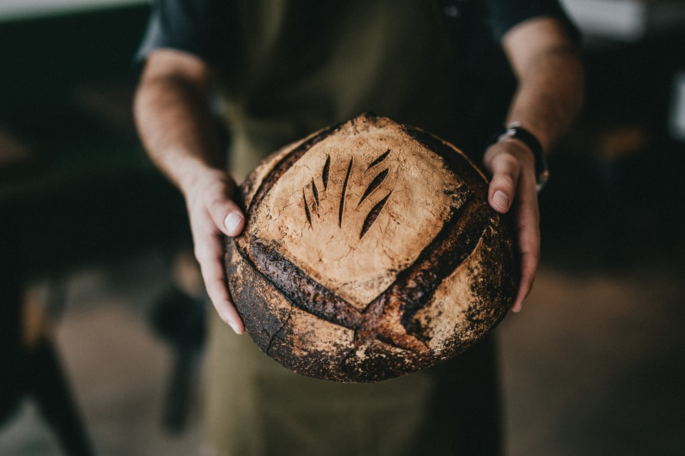 person holding toasted bread