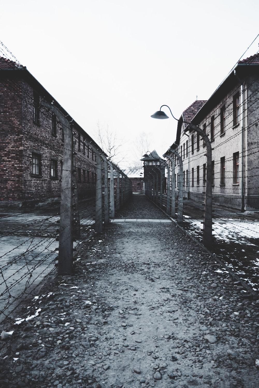 alley in between high building