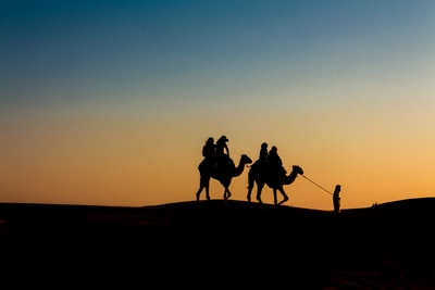 silhouette of people riding camels united arab emirates teams background