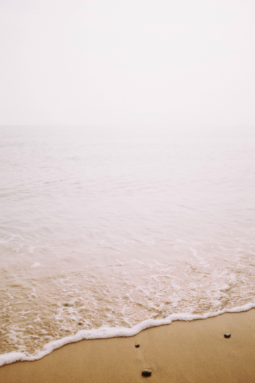 seashore with gray stones