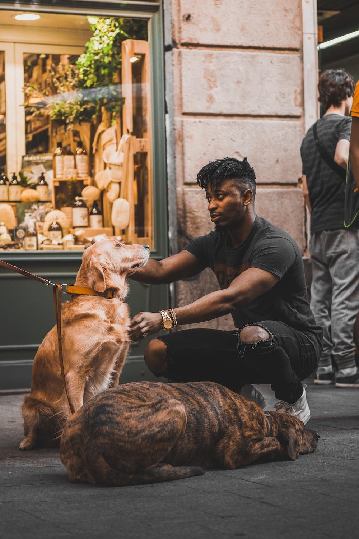 man in black crew-neck t-shirt petting golden retriever at the street