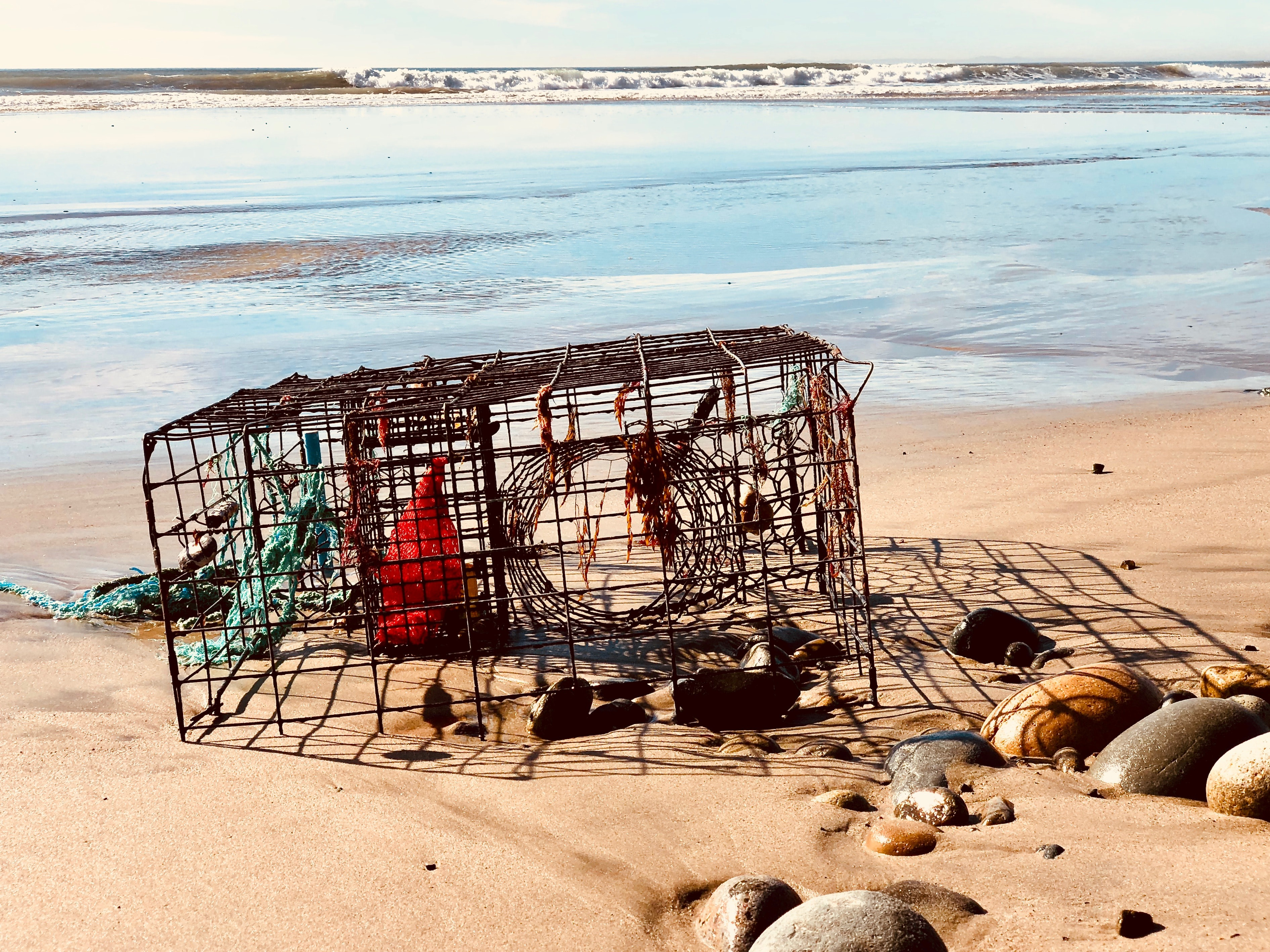 brown wire crab cage