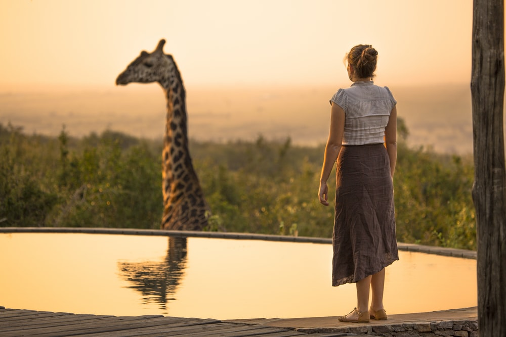 woman looking at brown giraffe with reflection on water