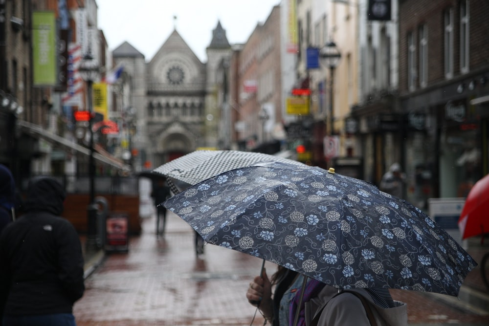 person holding floral umbrella between buildings