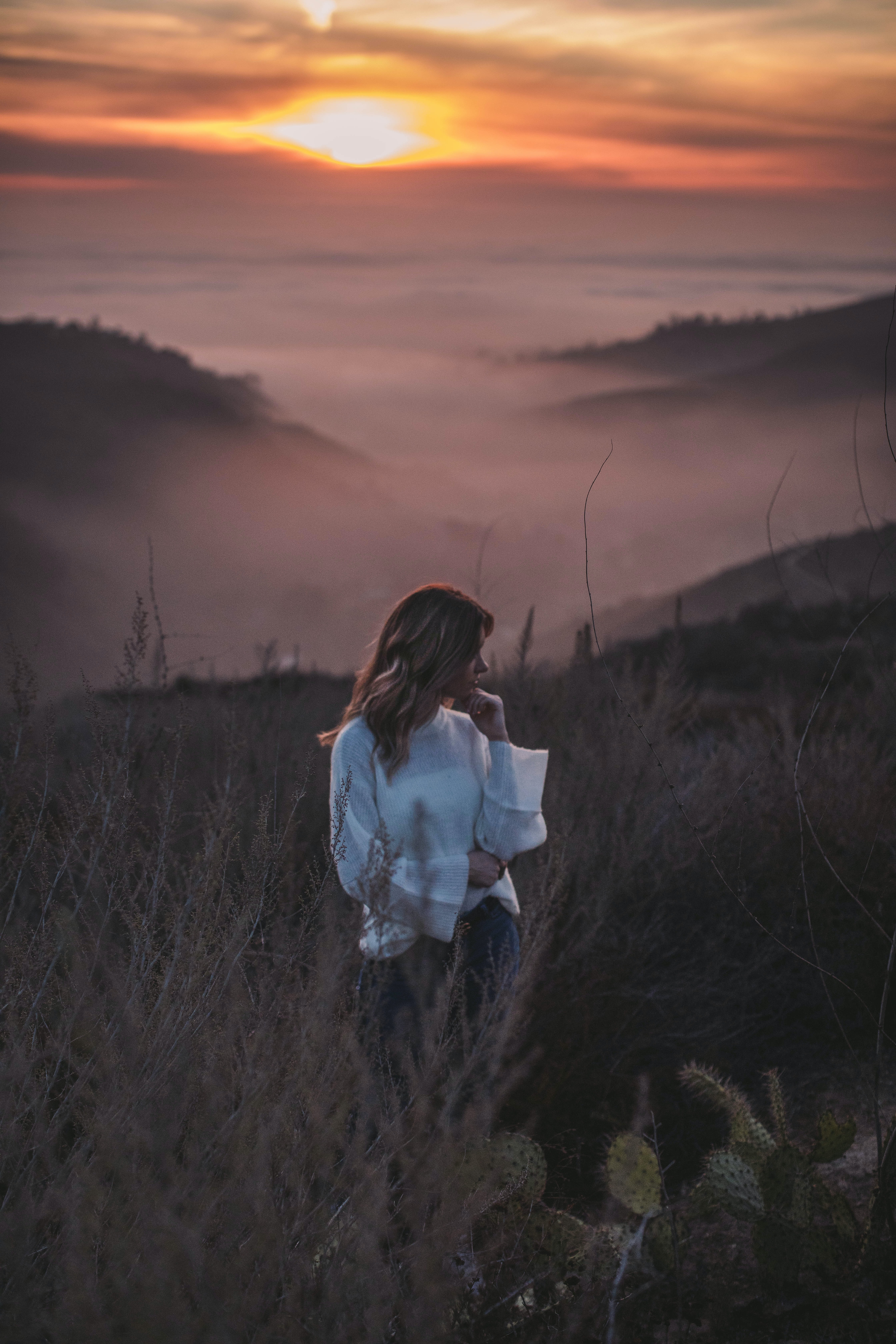 woman standing near brown leaf plants during golden hour
