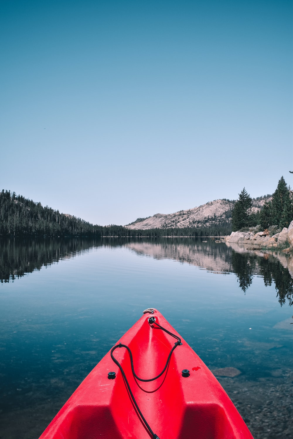 person capturing forest and mountain while in kayak