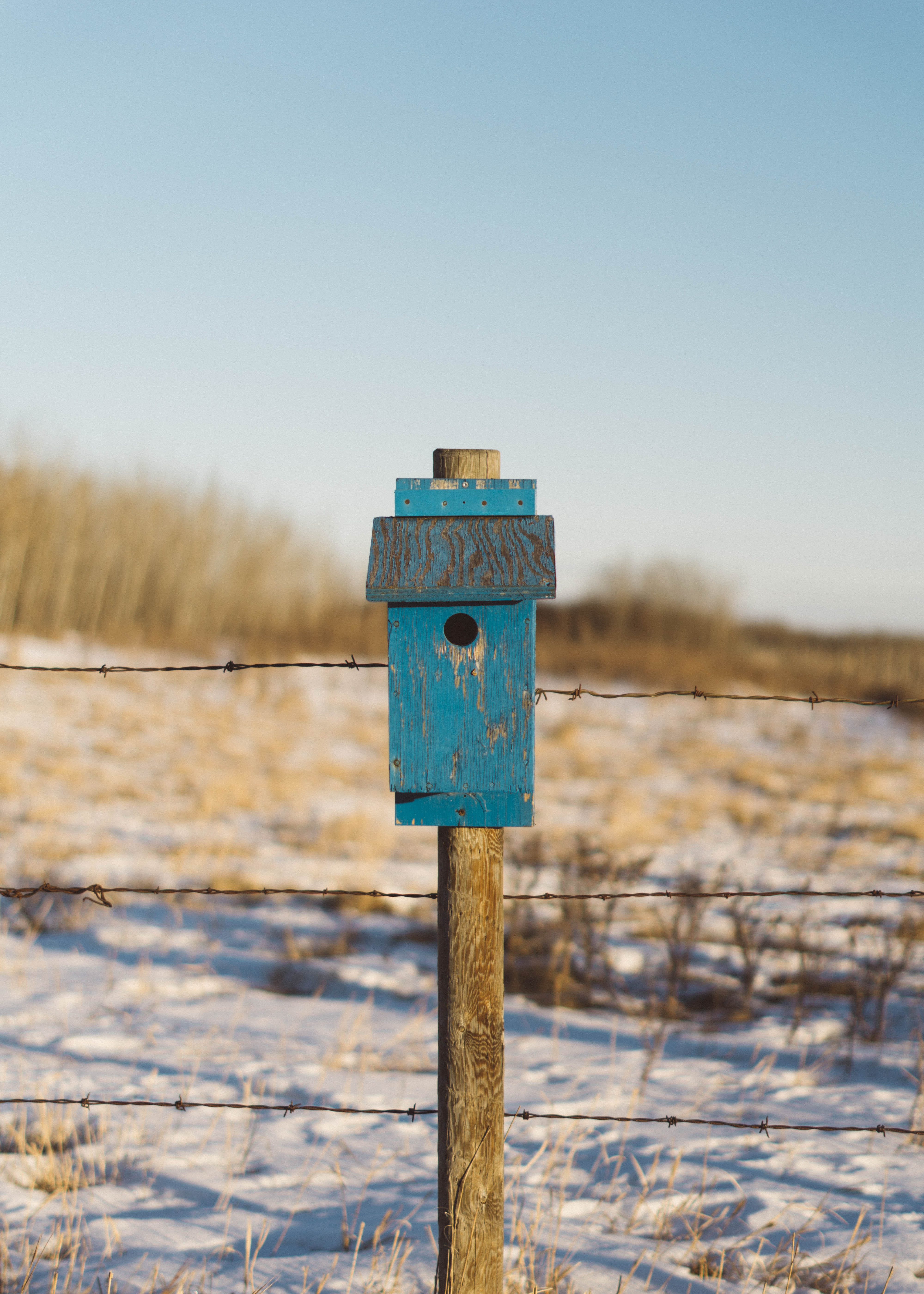 blue and brown wooden post at daytime