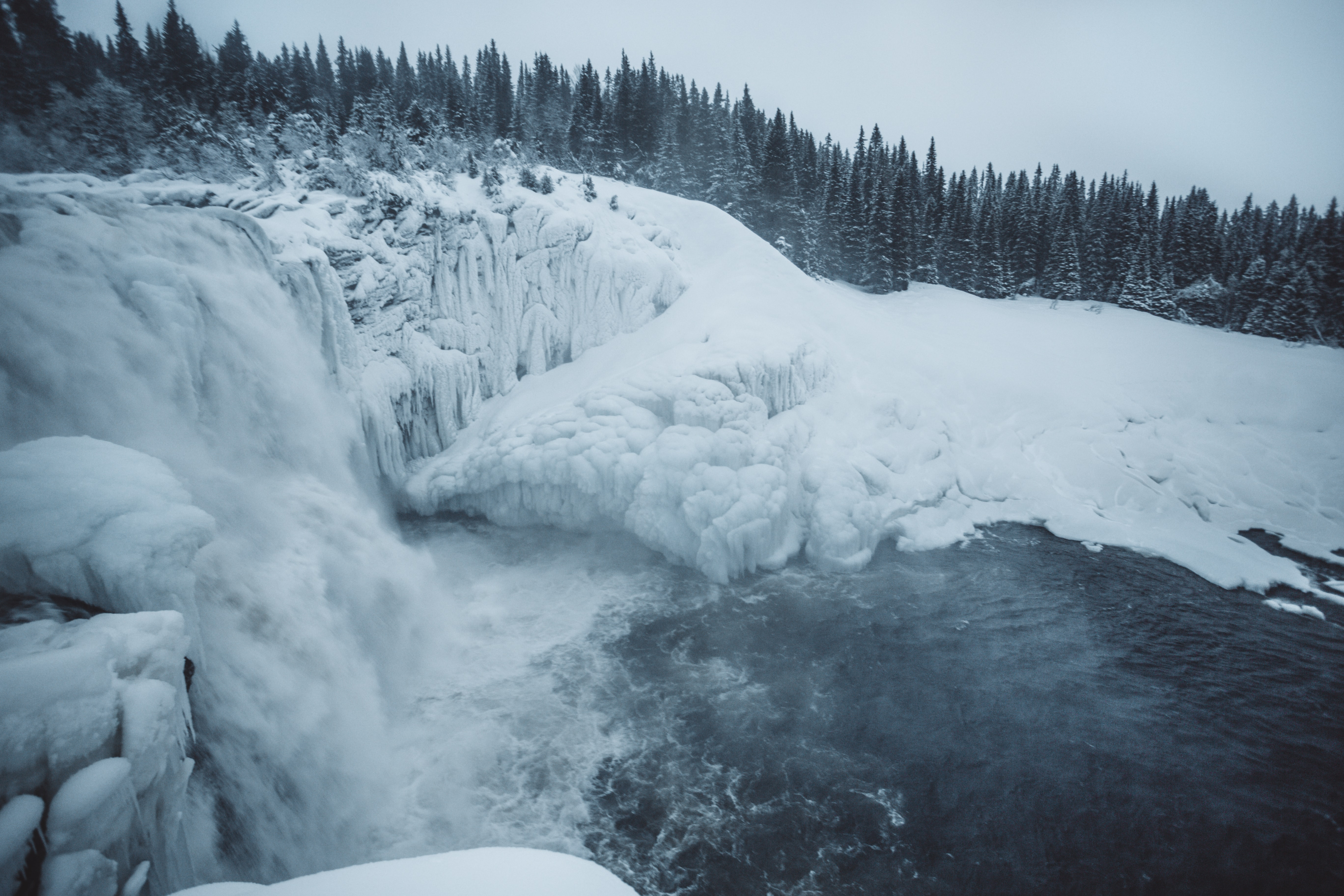 ice falls near the pine tree during daytime