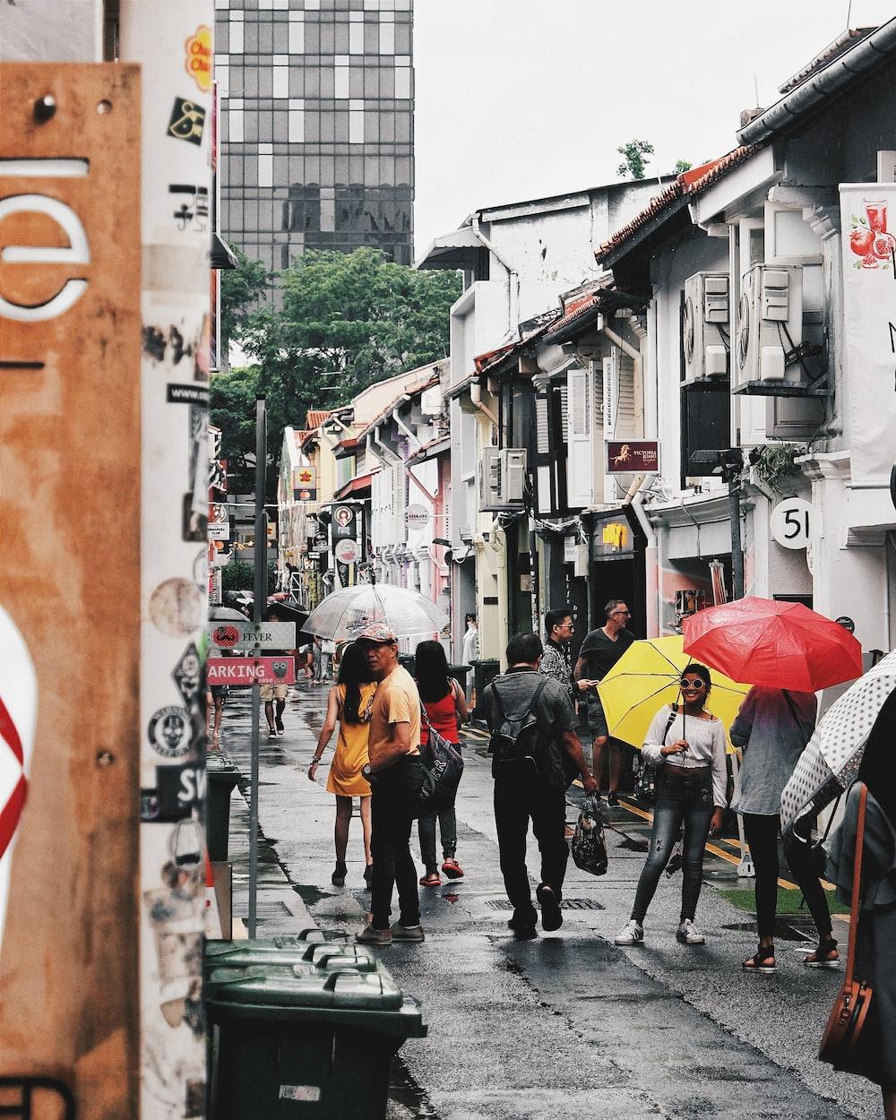 people using umbrella during daytime