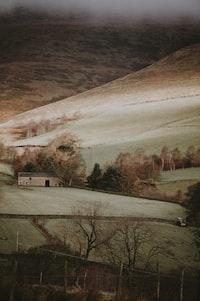 Countryside Tones