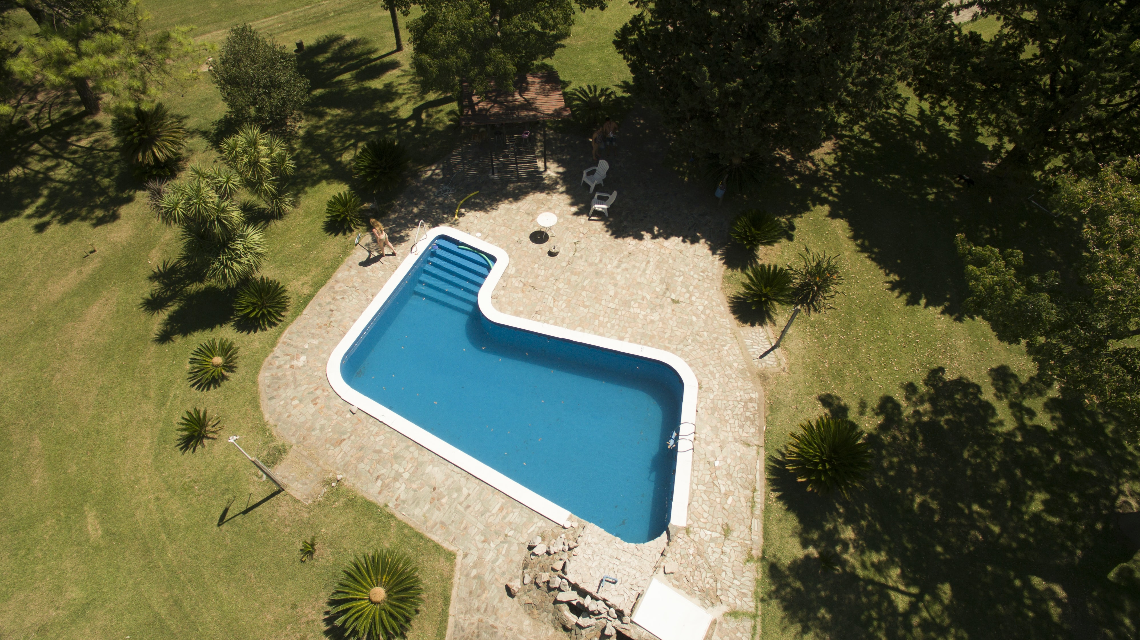 aerial photo of swimming pool with green leafed trees