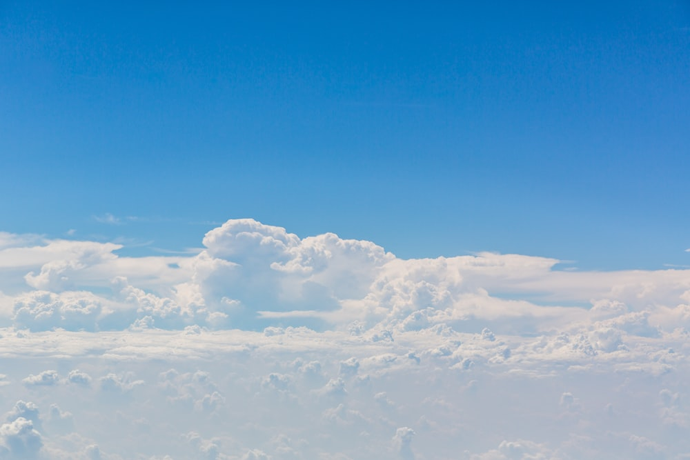 bird's eye view photo of sea of white clouds
