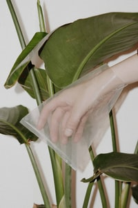 person with plastic bag on hand