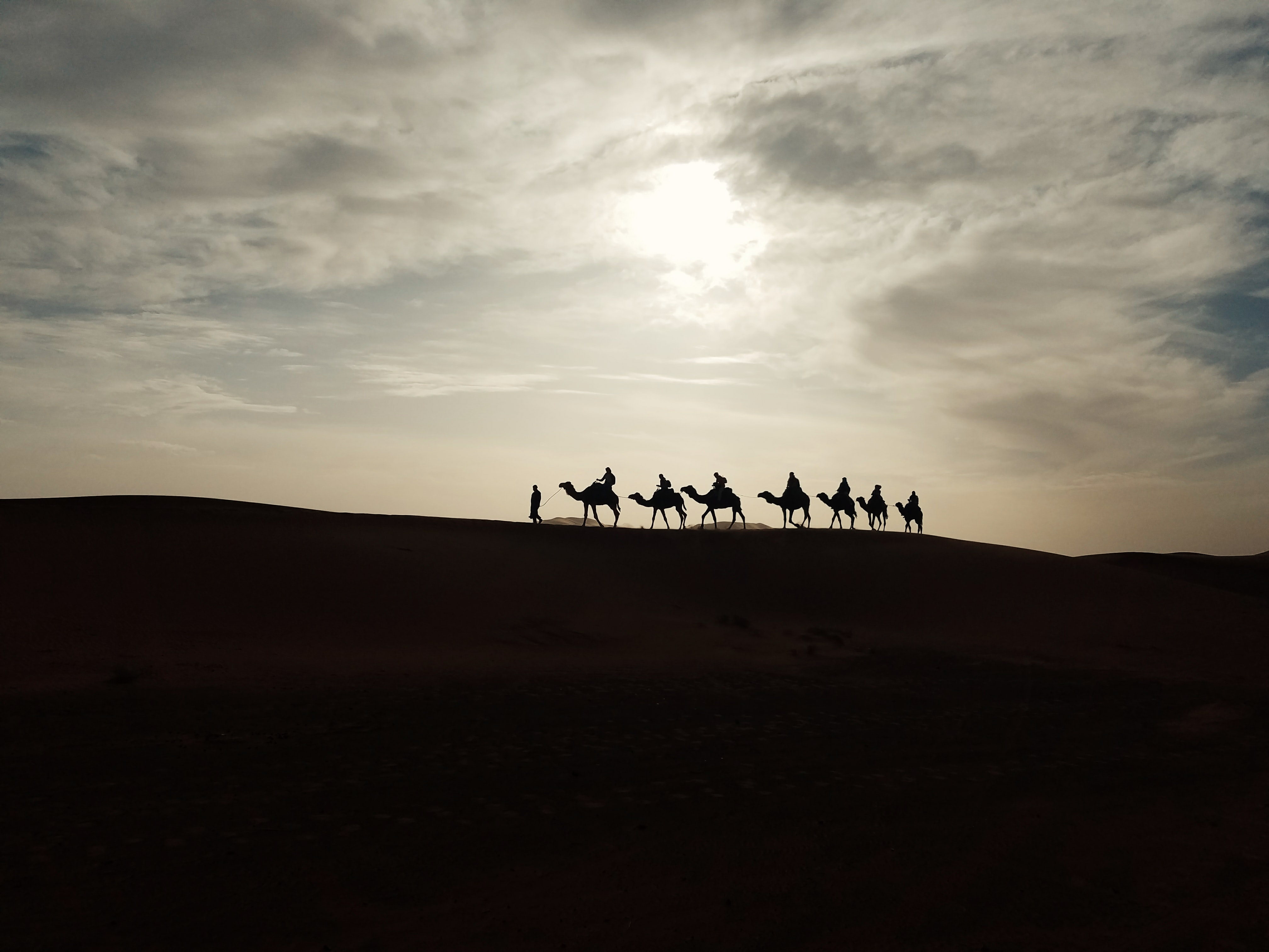 silhouette of person riding camel