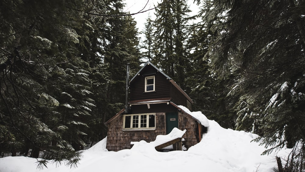 house in forest filled with snow