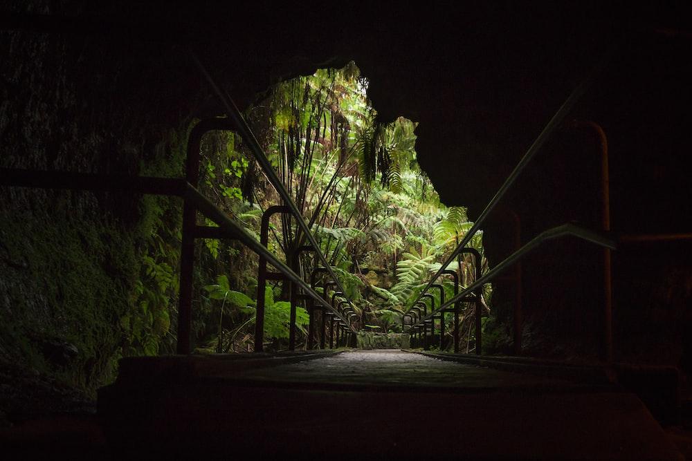 bridge architectural photography