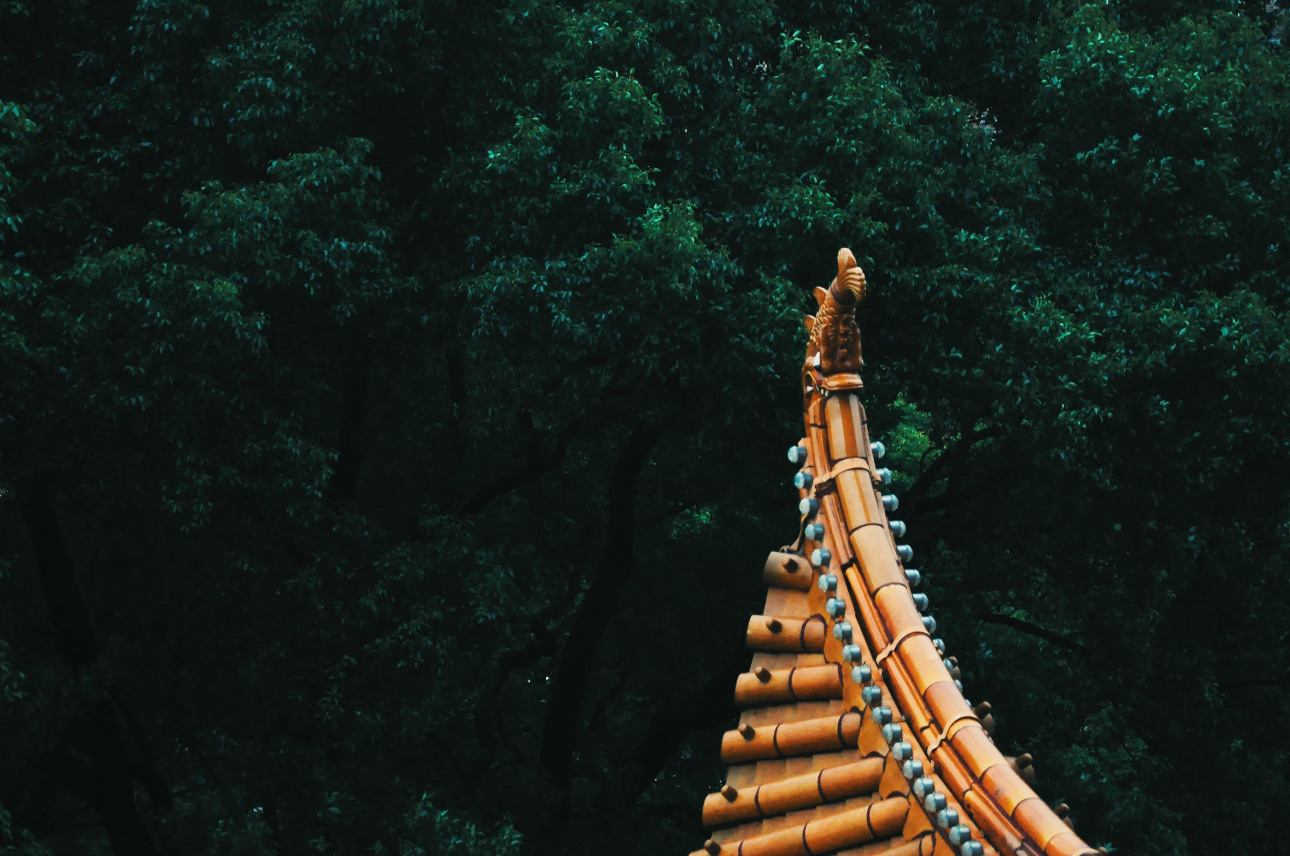 orange temple roof near trees