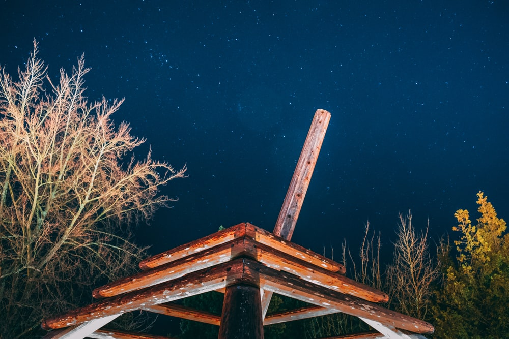 brown wooden frame beside tree during night time