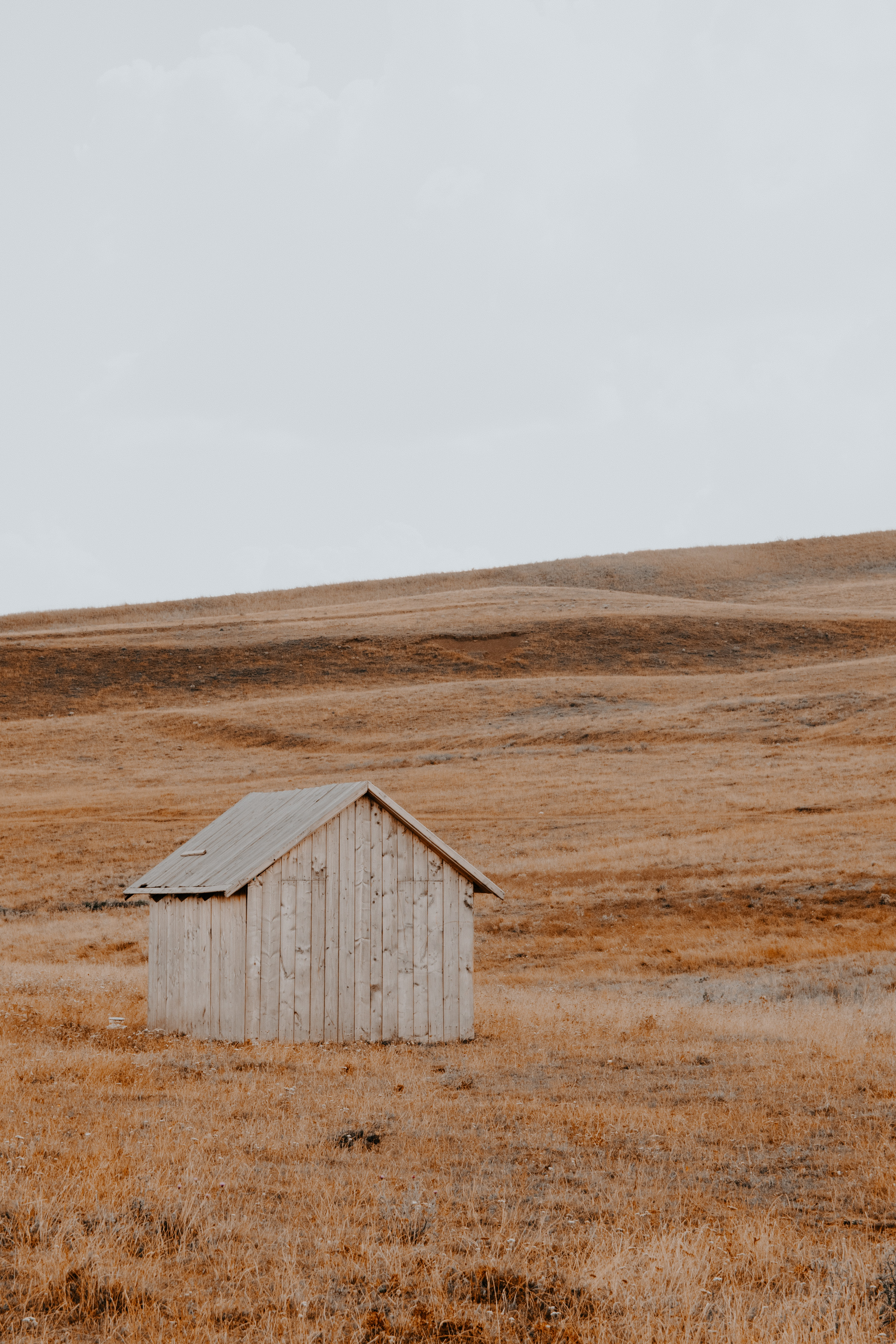 beige wooden shed on top of grass field